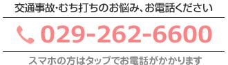 029-262-6600